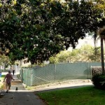 Developer Plans Small Lot Subdivision for 421 N Van Ness Ave