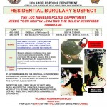 LAPD Looking for Larchmont Area Burglary Suspect