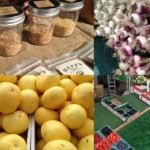 No Larchmont Farmers Market This Sunday