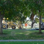 Harold Henry Park in Windsor Village Closed for Renovations