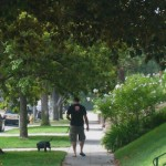 The Power of Walkability : Greater Wilshire