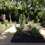 New Water-Wise Garden Fits English Tudor's Roots